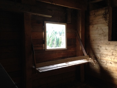 New South stall window