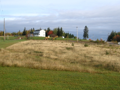 North pasture in 2005