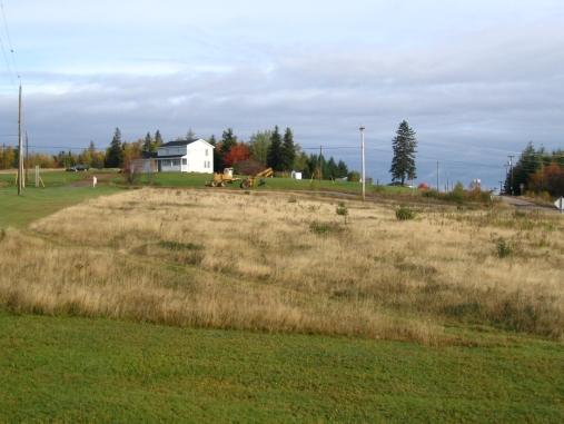 North pasture in 2005